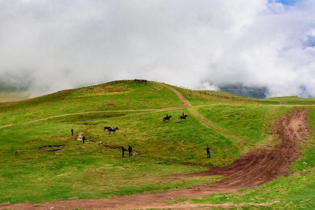 I cavalli pascolano nelle montagne della georgia. distretto di kazbegi, paesaggio autunnale.