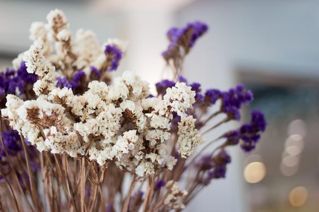 I fiori asciutti selezionano il fondo della sfuocatura del fuoco, fondo asciutto variopinto della sfuocatura dei fiori
