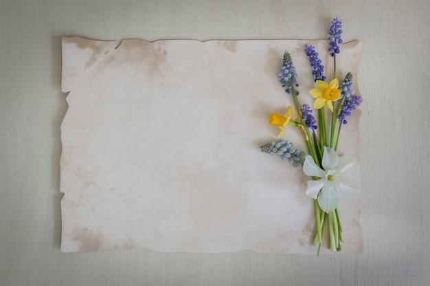I fiori della primavera sono narcisi e muscari con carta per testo su un fondo di legno. copia spazio, vista dall'alto. biglietto di auguri. .