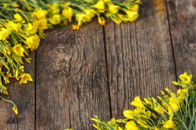 I fiori gialli sono incorniciati su un fondo di legno, su una bella molla e su un fondo festivo.