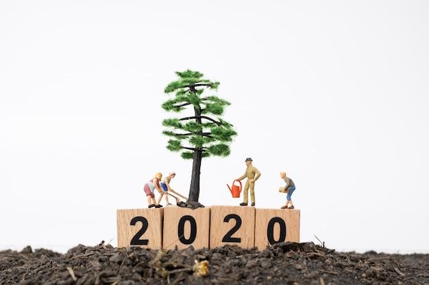 I giardinieri si prendono cura di un albero sul blocco di legno numero 2020