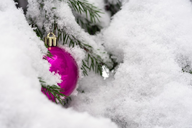 I giocattoli rossi luminosi dell'albero di natale appendono su un ramo dell'albero di natale in neve bianca.