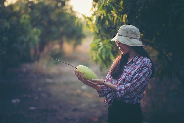 I giovani agricoltori stanno controllando la resa nel frutteto, giardino di mango.