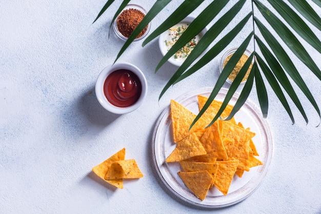 I nachos messicani tradizionali dello spuntino con salsa, le spezie e la palma si ramificano su un fondo bianco