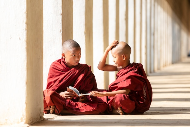 I novizi del buddismo stanno leggendo e studiando
