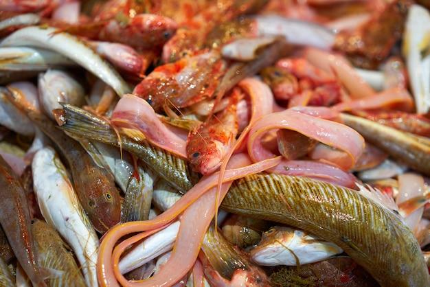 I pesci si mescolano per zuppa di pesce con le zecche