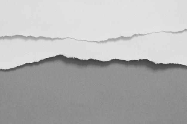 I pezzi di carta lacerata strutturano il fondo, copiano lo spazio.