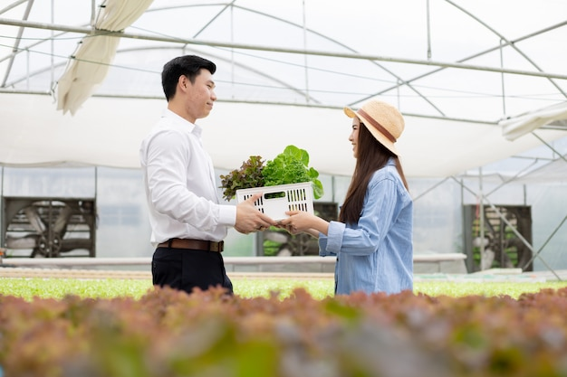 I produttori inviano cestini di ortaggi biologici per i consumatori.