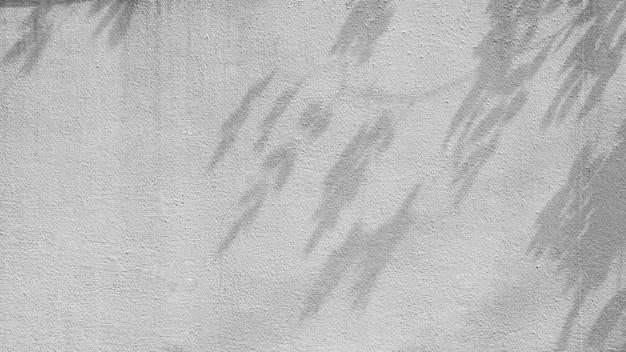 I rami di albero ombreggiano sulla vecchia parete del cemento.