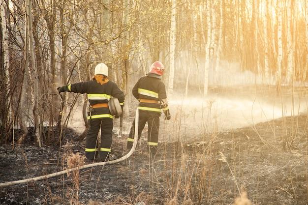 I soccorritori estinguono gli incendi boschivi
