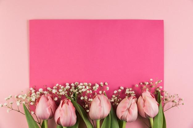 I tulipani e l'alito del bambino fioriscono contro fondo rosa