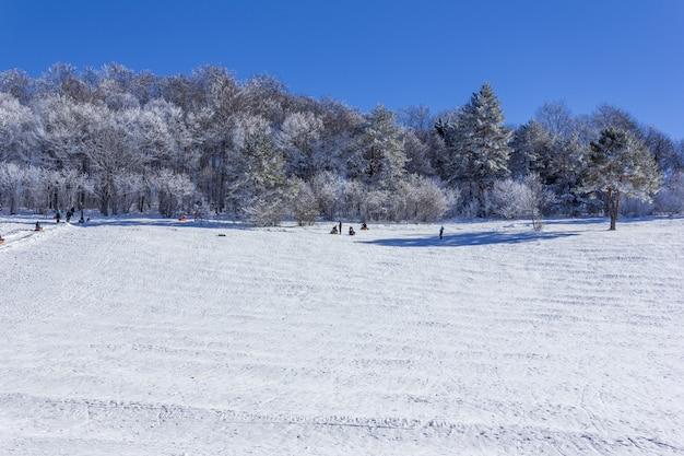I turisti con i bambini in vacanza cavalcare su una slitta gonfiabile su un pendio nevoso in una giornata invernale