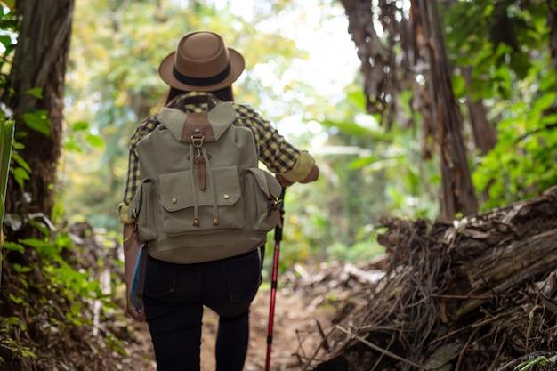 I turisti femminili si stanno godendo la foresta.