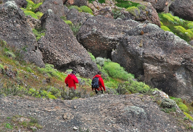 I turisti nel parco nazionale torres del paine, patagonia, cile