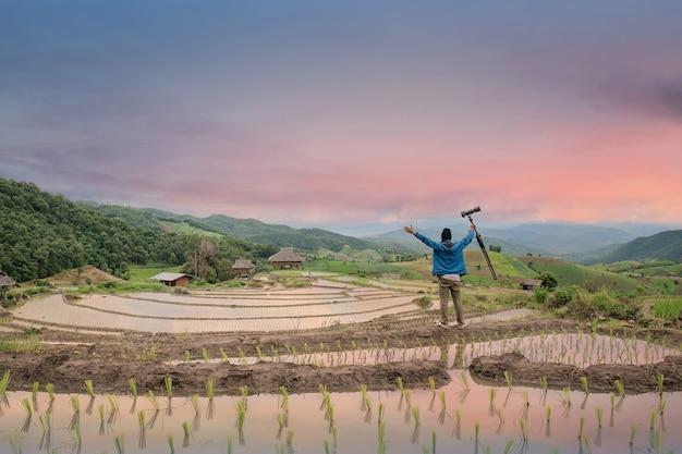 I turisti stanno in piedi per vedere la vista del campo di riso, bowling al tramonto.