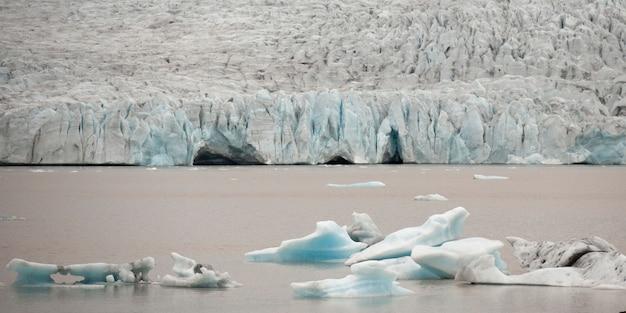 Iceberg galleggianti nell'oceano