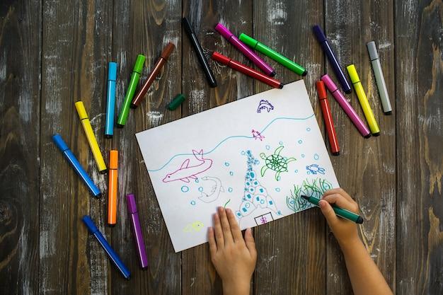 Il bambino di mare disegna con le matite colorate