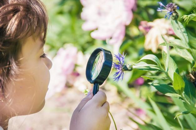 Il bambino sta guardando in una lente d'ingrandimento. aumentare.