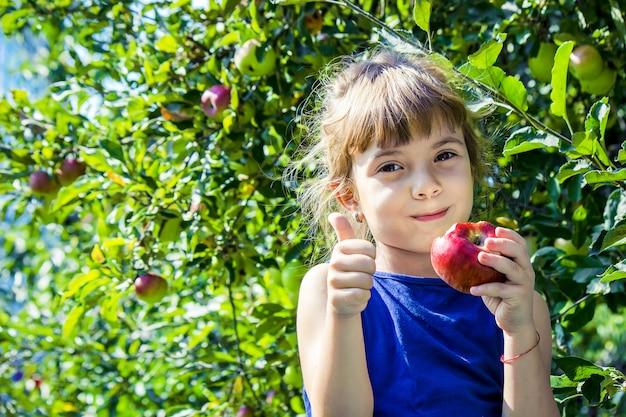 Il bambino sta mangiando una mela in giardino. messa a fuoco selettiva