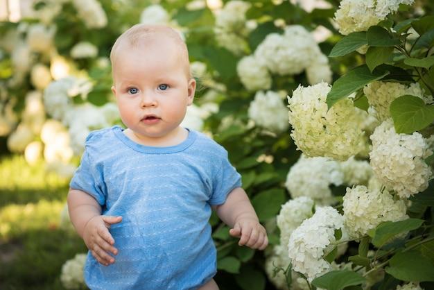 Il bambino sullo sfondo di grandi fiori bianchi