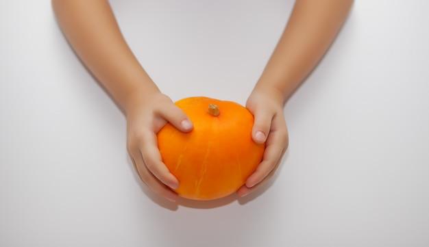 Il bambino tiene una zucca matura nelle mani. concetto di raccolta autunnale