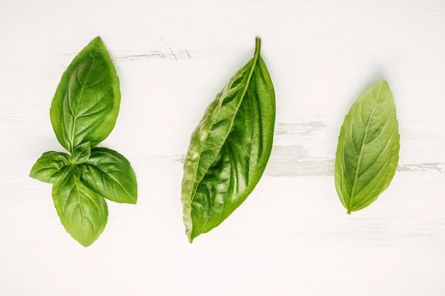 Il basilico verde dolce fresco va su fondo di legno misero bianco.
