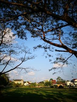 Il bellissimo paesaggio estivo con una casa e un giardino verde.