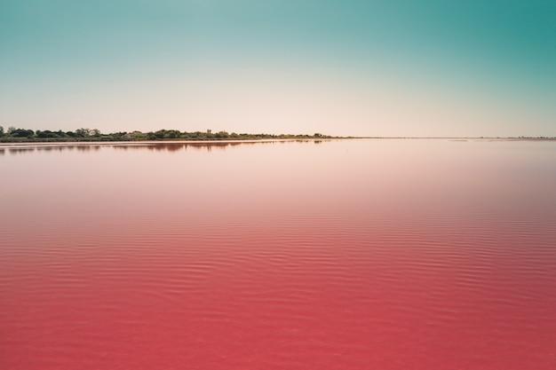 Il bello lago rosa calmo sotto il cielo blu ha catturato in camarque, francia
