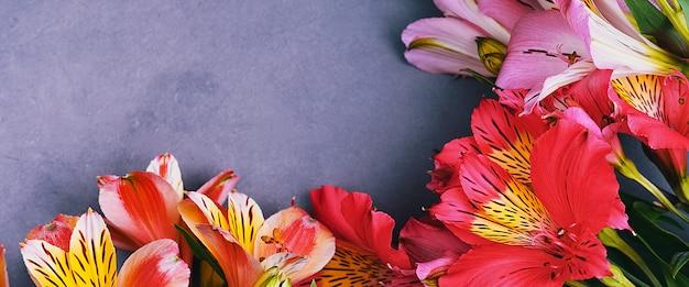 Il bouquet di orchidee è bellissimo, fresco, rosso vivo e lilla su fondo chiaro.