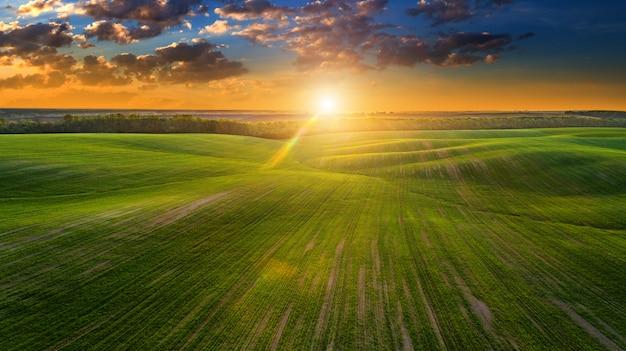 Il campo verde è al tramonto girato con il drone