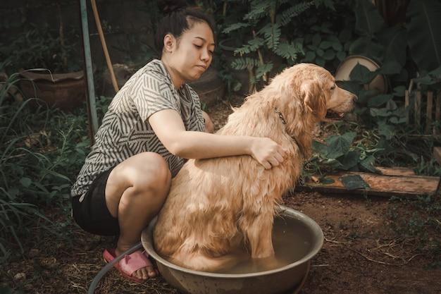 Il cane da balneazione, una donna sta facendo il bagno al suo cane golden retriever.