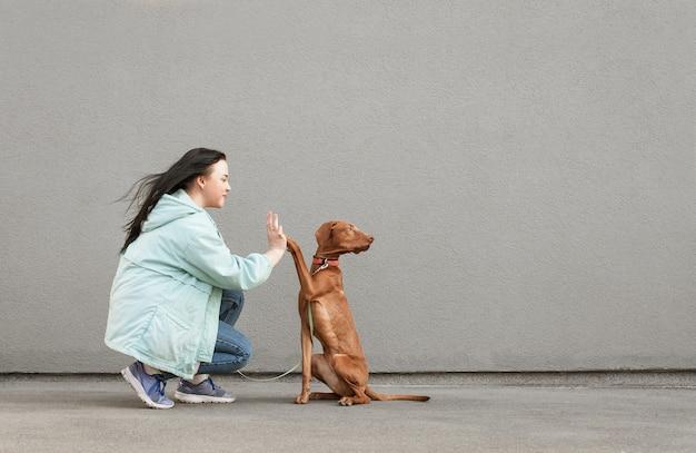 Il cane dà cinque ragazze. il cucciolo addestrato esegue le squadre.