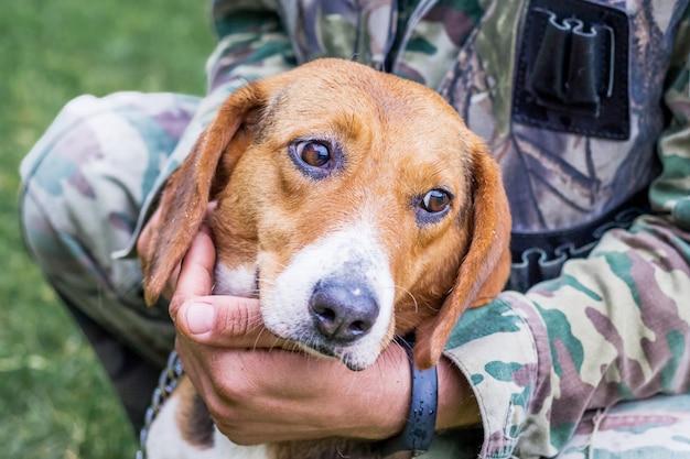 Il cane di razza è un segugio estone tra le braccia del suo padrone