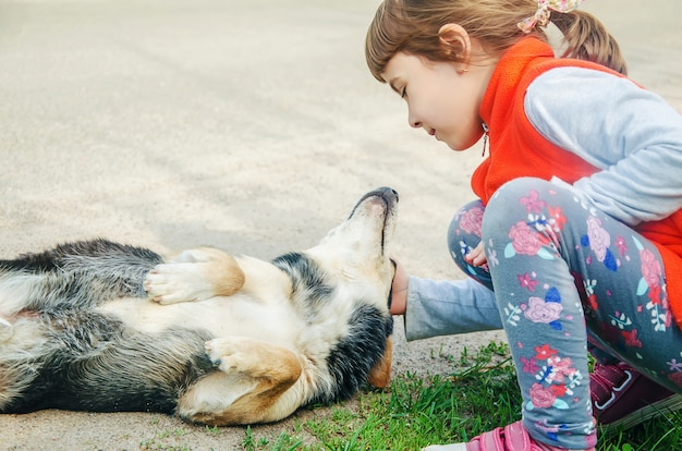 Il cane è l'amico dell'uomo