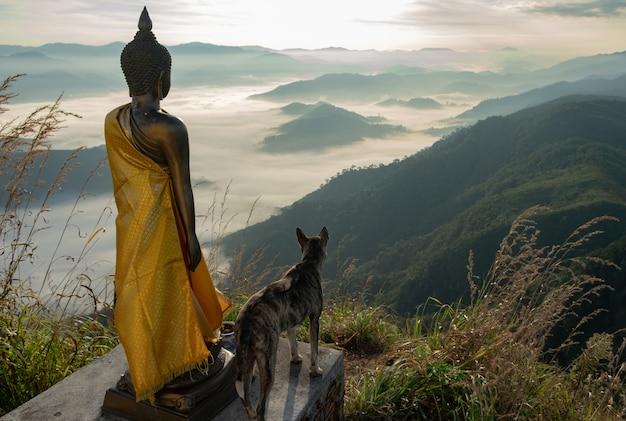 Il cane in piedi buddha guarda la coppia montagna panoramica fiancheggiata da supplenti