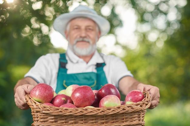 Il canestro con la merce nel carrello rossa delle mele, agricoltore holdng su fondo.