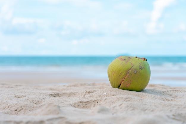 Il cocco è posto su un mucchio di sabbia sulla spiaggia