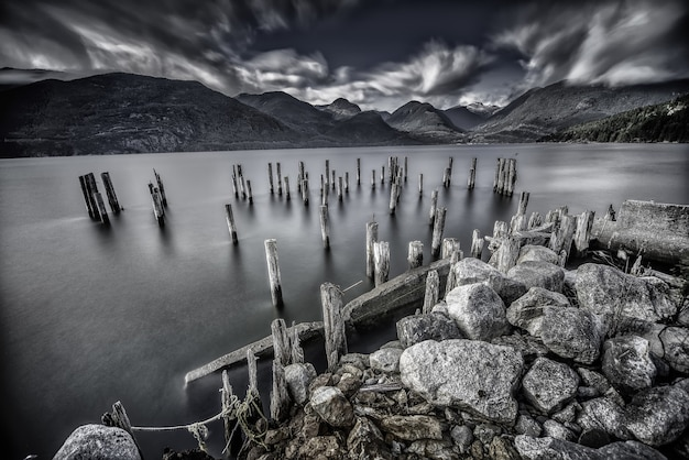 Il colpo di gradazione di grigio dell'albero collega un lago circondato dalle rocce enormi e dalle belle montagne