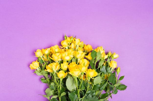 Il concetto dell'estate della primavera con le rose gialle fiorisce sul fondo porpora della tavola
