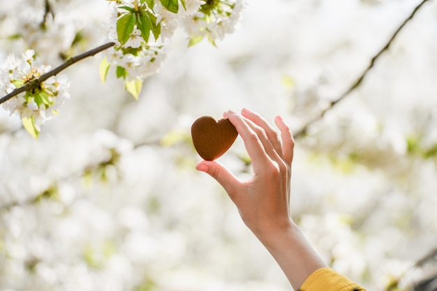 Il concetto di amore per la natura. fioritura estiva. prenditi cura della natura