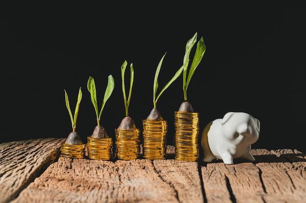 Il concetto di crescita finanziaria di dollari