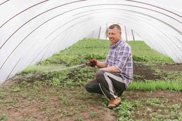 Il contadino sorridente lavora in una serra domestica, prendendosi cura delle piantine