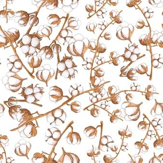 Il cotone fiorisce il modello senza cuciture su bianco