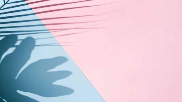 Il dominio è aumentato con il fondo degli azzurri con le ombre delle foglie