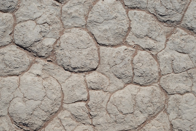 Il fango si incrina sul terreno argilloso. sossusvlei, namib naukluft national park - namibia