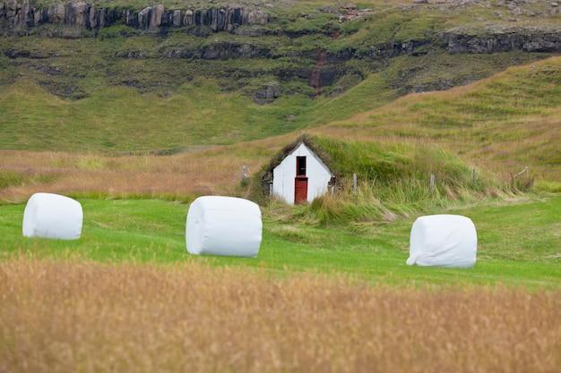 Il fieno bianco rotola su un campo verde dell'islanda. colpo orizzontale
