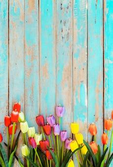 Il fiore del tulipano fiorisce su fondo di legno d'annata, progettazione della struttura del confine.