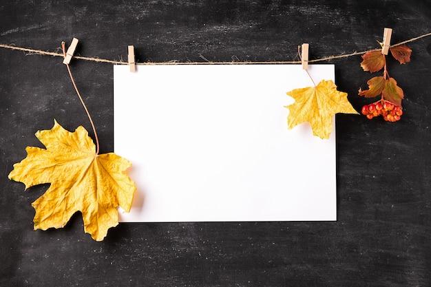 Il foglio di carta bianco vuoto e le foglie asciutte appendono sulle mollette da bucato sul bordo di gesso nero.