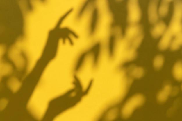 Il fondo dell'estate con il ramo lascia le ombre su una parete gialla