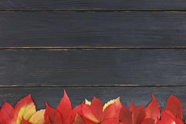 Il fondo di autunno con la caduta variopinta lascia sulla tavola di legno nera con il posto per testo. cornice con foglie d'autunno. copia spazio. vista dall'alto